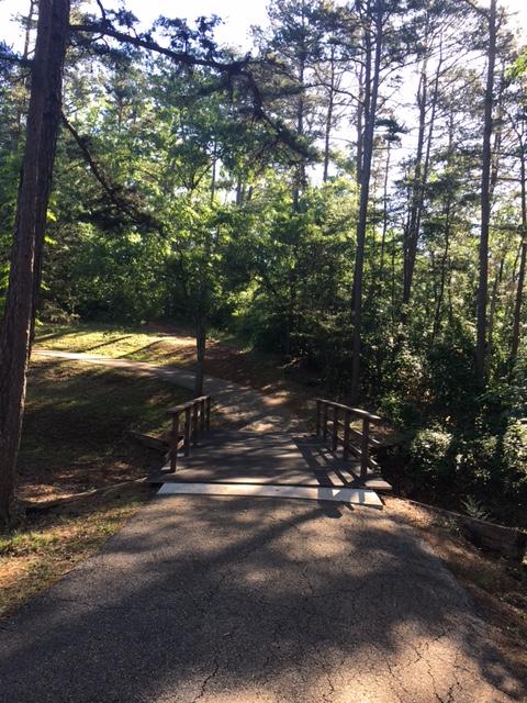 Laurel Park 7